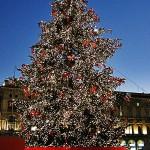 2013 Merry Christmas
