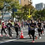 第5回大阪マラソン(8.8キロの部)に出走させていただきます。