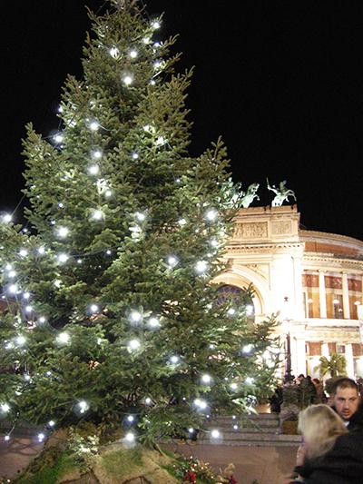 クリスマスツリー パレルモ