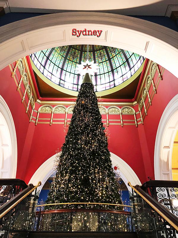 シドニーのクリスマスツリー